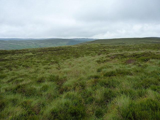 Moorland above the Eunant Fach