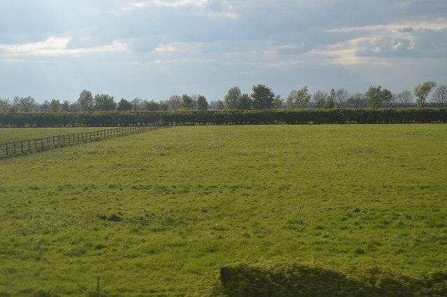 Field, New Farm