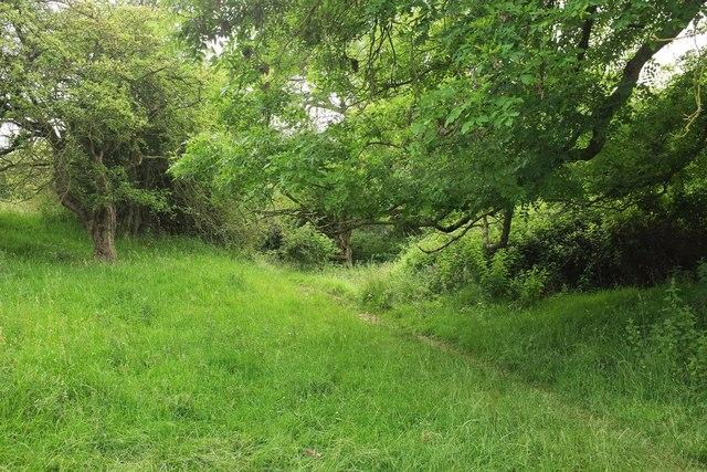 Path below Fiddler's Knap