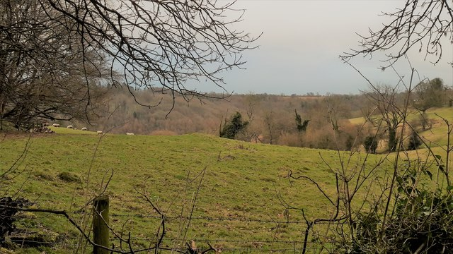 Pastures at Edgeworth