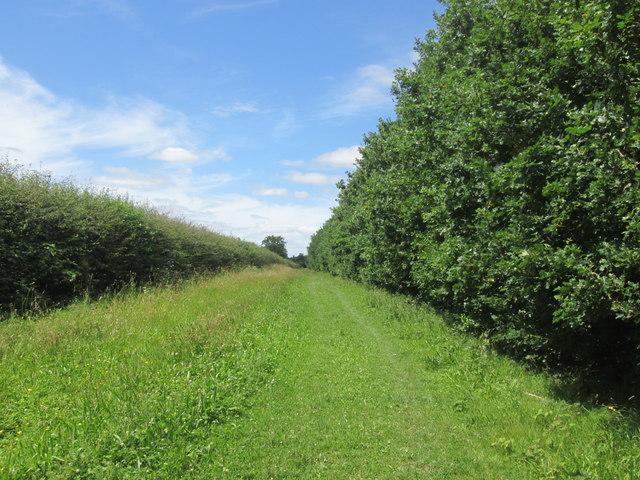 Leeds Lane towards Holme Green