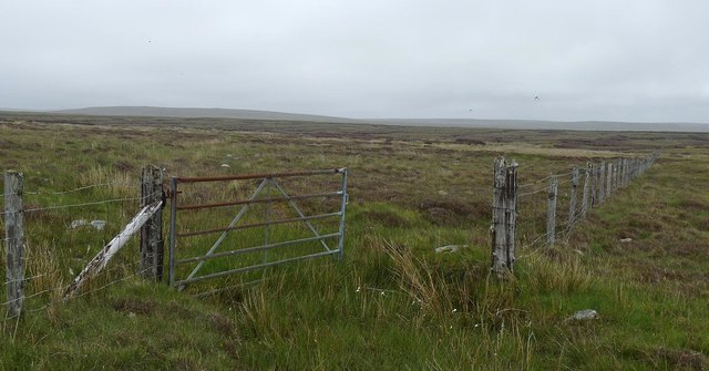 Gate, Moin' Ard, Isle of Lewis