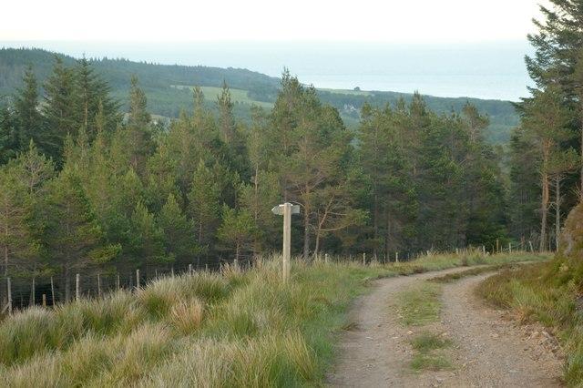 Track on Ben Bhraggie, Sutherland