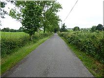 H6056 : Feddan Road, Carran / Ballynasaggart by Kenneth  Allen