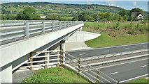 J3194 : Flyover, Lismenary, Ballynure (July 2017) by Albert Bridge