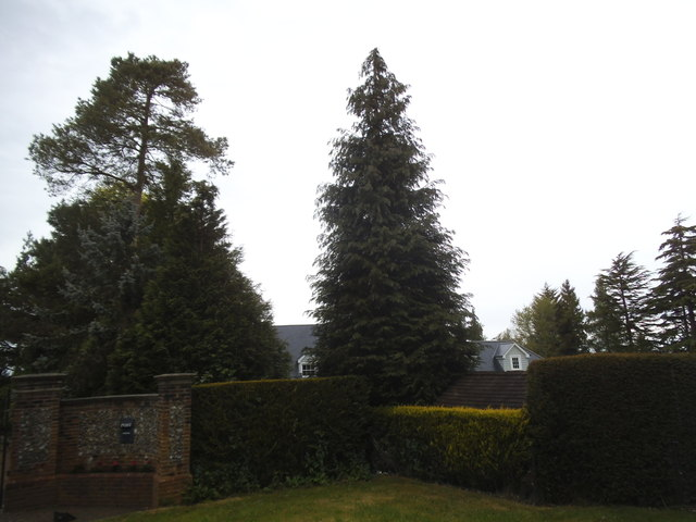 House and garden on Beech Avenue, Effingham