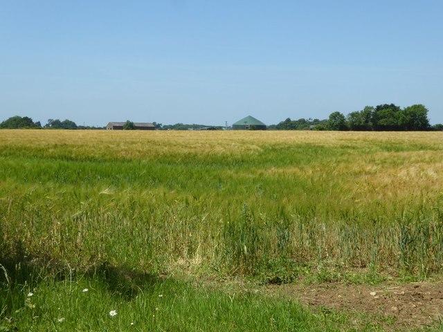 Farm buildings, Homeleaze Farm