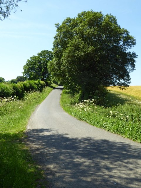 Country road at Hammersmith Bottom