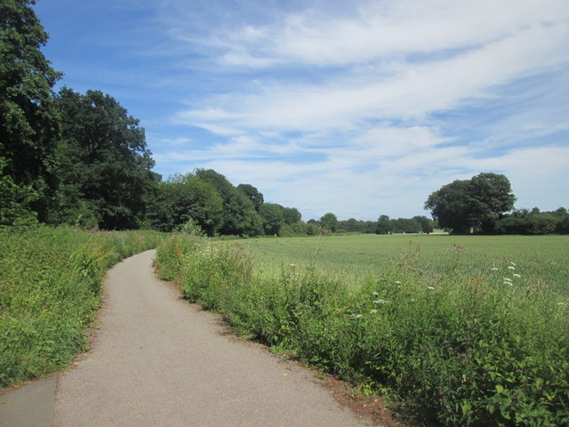 Footpath at Middlethorpe Common
