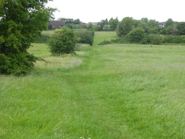 Path across Hilperton Marsh