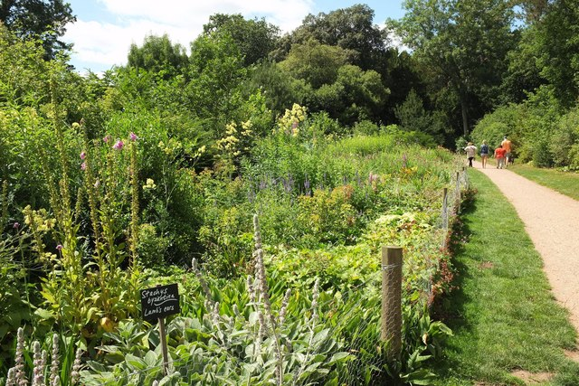 Flower border, Croome Park