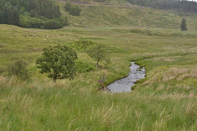 The River Lonan near Clachadow
