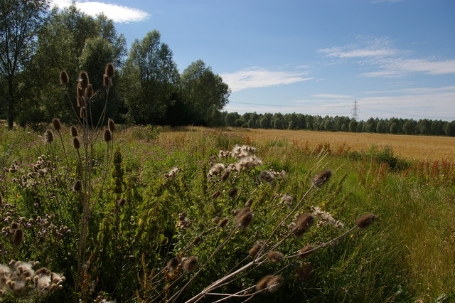 Fields south of the River Chelmer, near Boreham