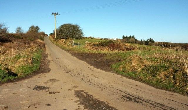 Road past Lowertown Farm