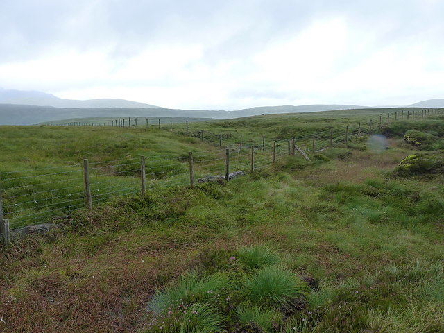 Junction of fences on Bryn Glâs