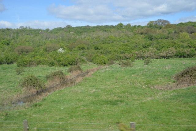 Ditch in grassland