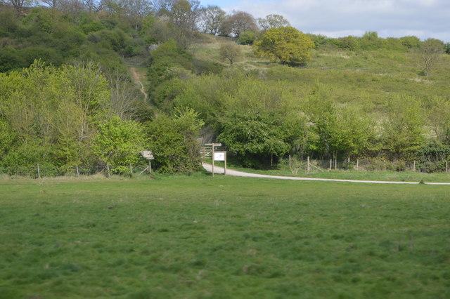 Footpath, Hadleigh Park
