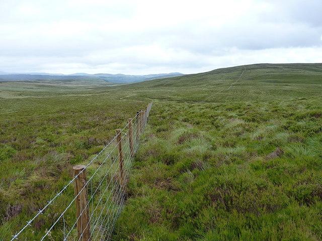 Fenceline below Mynydd Coch