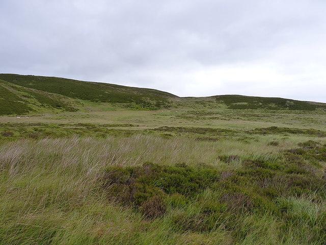 Moorland below Carreg y Bîg