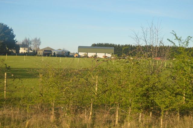 New Farm