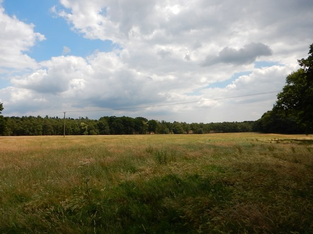 Field next to Green Lane route
