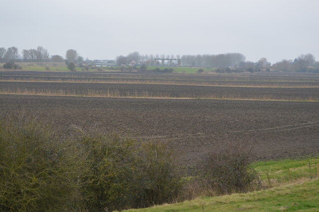 Fenland between the river and flood relief channel