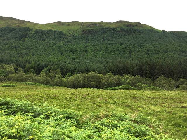 Lower Gleann Chòinneachain