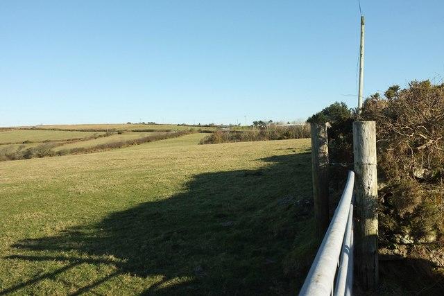 Pasture near Moorgate