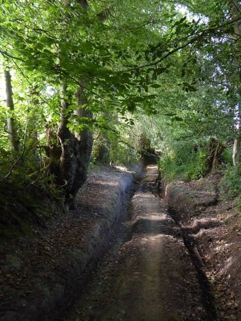 Rutted byway north of Sotherington Lane