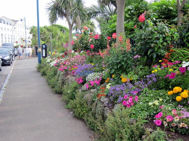 Den Crescent Flower Border Teignmouth