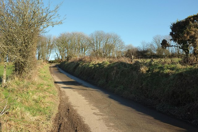 Lane to Pencarrow
