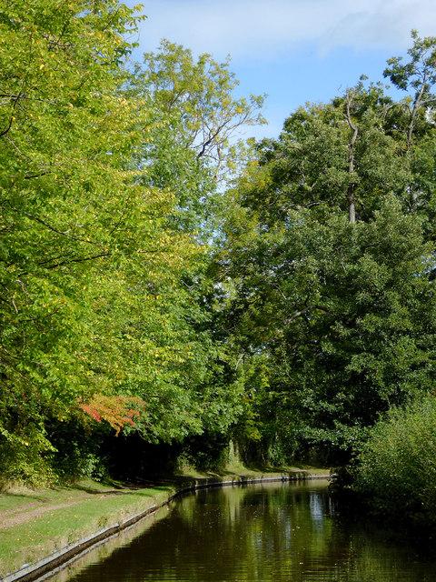 Llangollen Canal east of Preesgweene, Shropshire