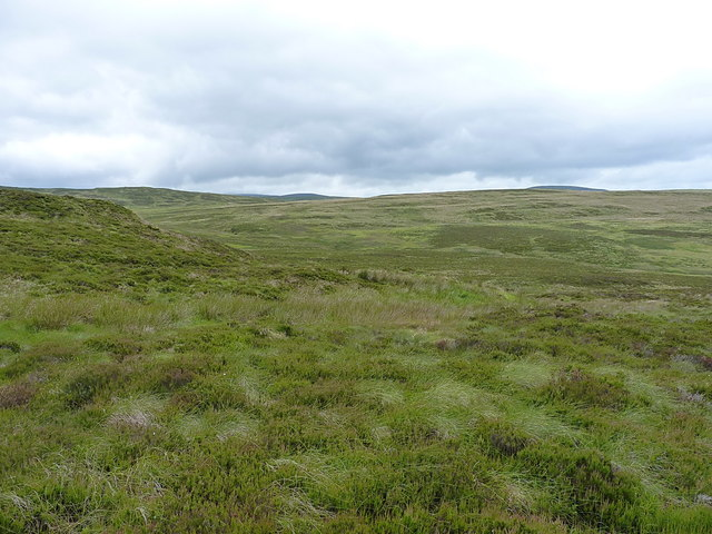 Moorland in the upper valley of the Hirddu Fach