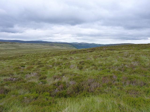 Hillside above the Hirddu Fach