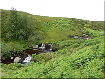 SH9520 : Waterfalls on the Afon Hirddu Fach by Richard Law