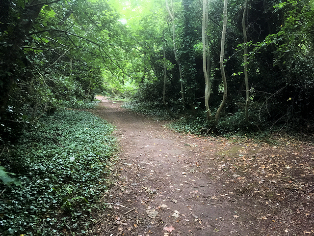 Nature Trail at Humber Bridge Country Park