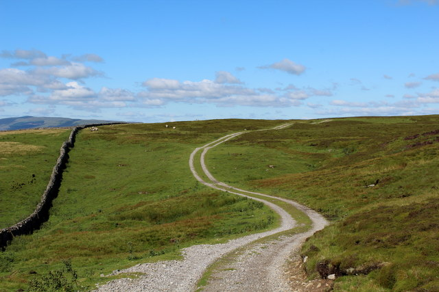 Track on Whitfield Fell (2)