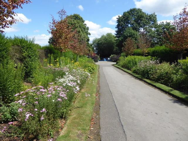Flowerbeds in Durants Park