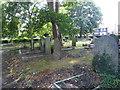TQ3597 : St James's Churchyard, Hertford Road, Enfield by Marathon