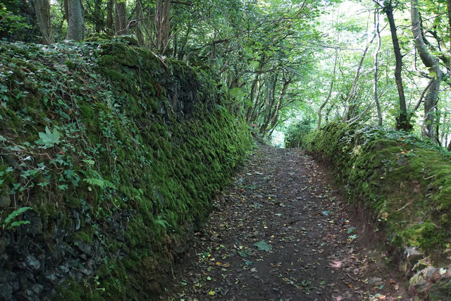 Moss-covered walls above Lynton