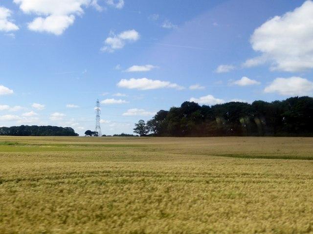Arable land near Lea Town