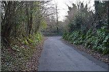 SX5158 : Footpath through Estover by N Chadwick