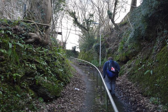 Climbing up to Eggbuckland