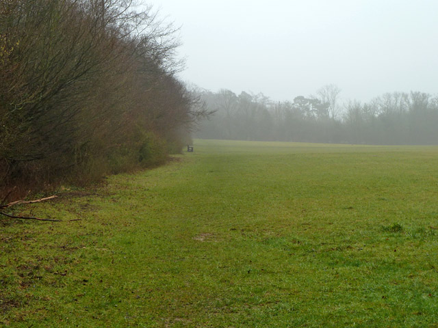 Open space, Selsdon Nature Reserve
