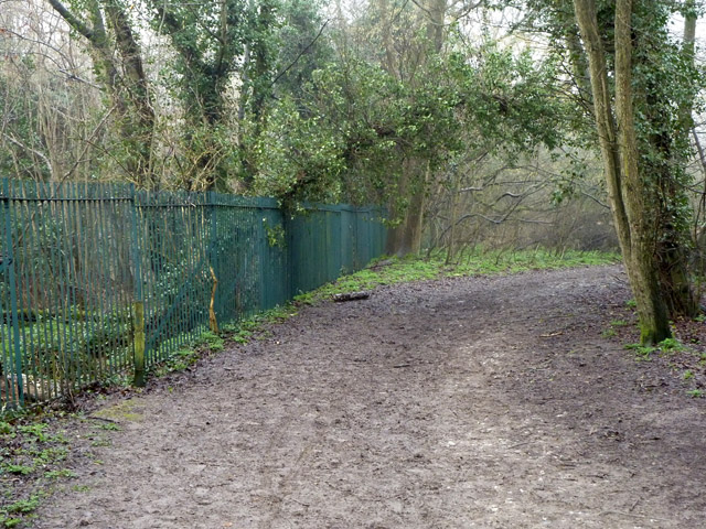 Muddy path between fields,  Selsdon Nature Reserve