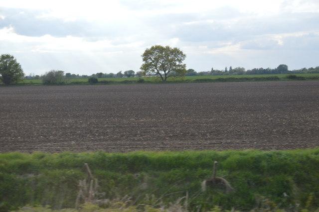 South of Car Dyke