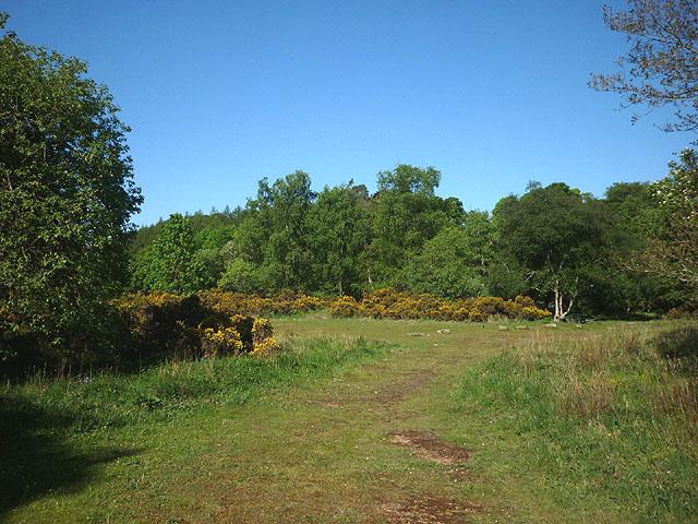 Picnic area, Baybridge
