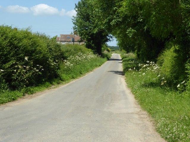 Road passing Williamstrip Farm