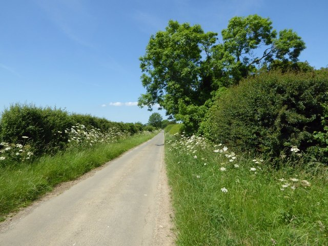 Country road approaching Coltsmoor Farm