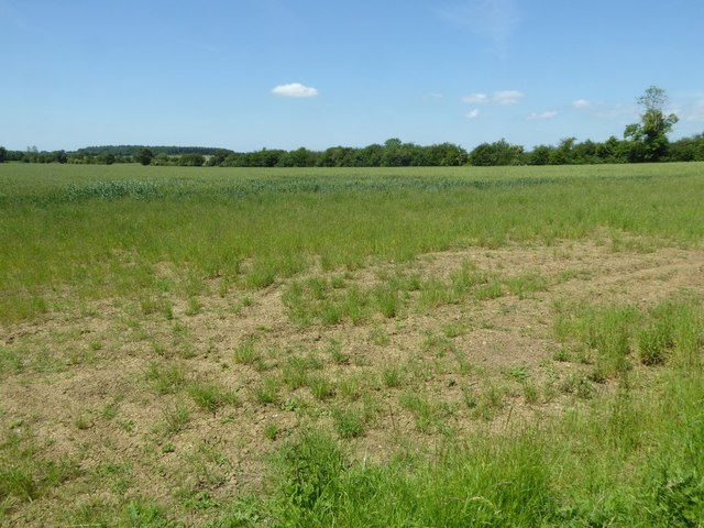 Arable land to the east of Johnman's Barn